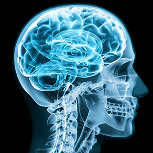 formación neuropilates